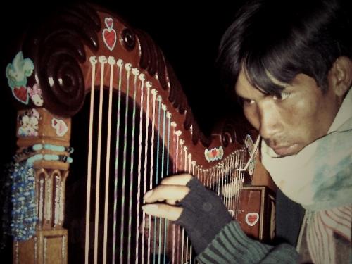 Harpe andine, Pérou