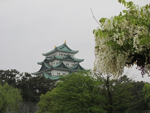 chateau de nagoya photo