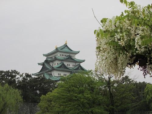 chateau de nagoya photo