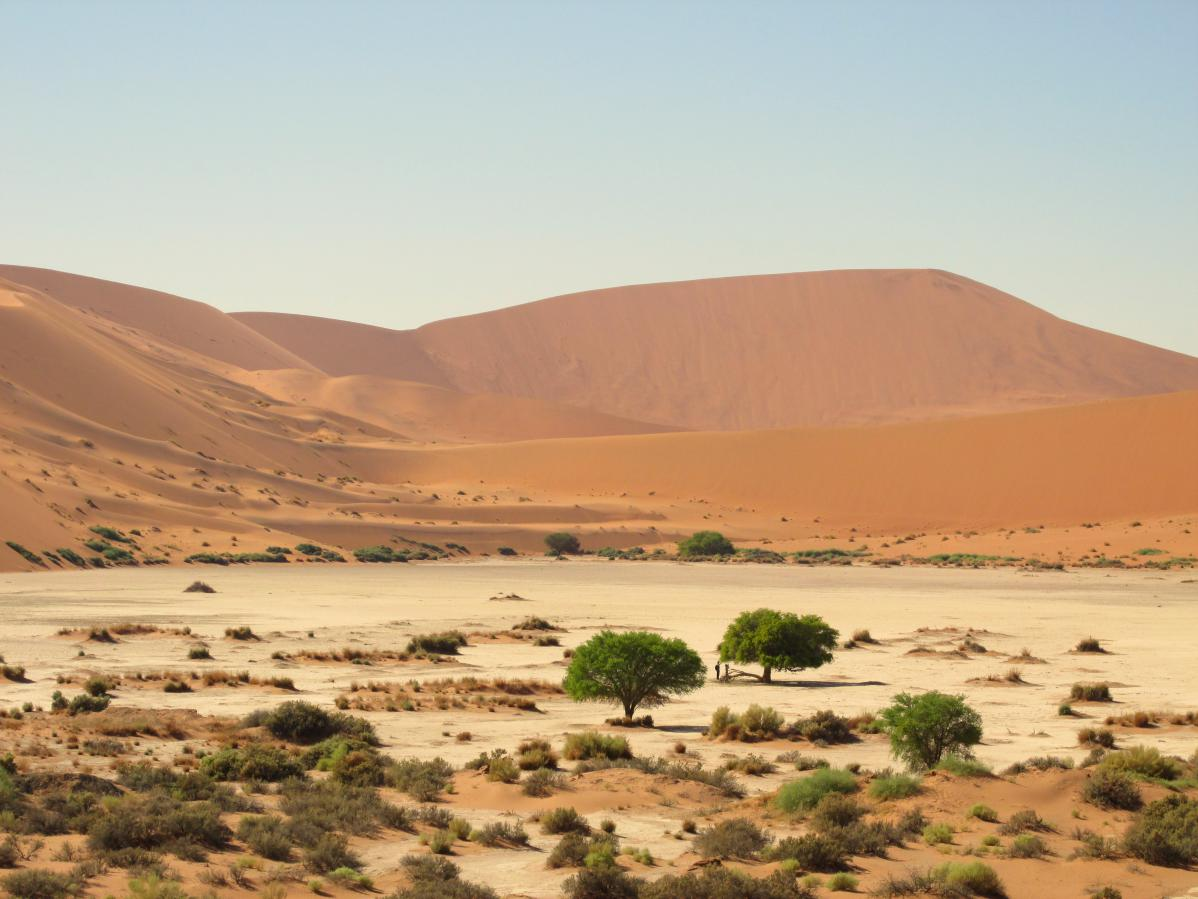 voyage initiatique en Afrique