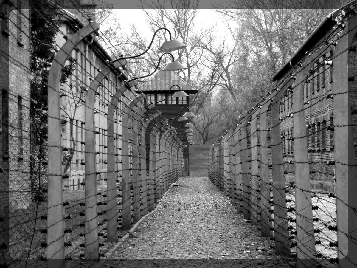 Auschwitz, Pologne