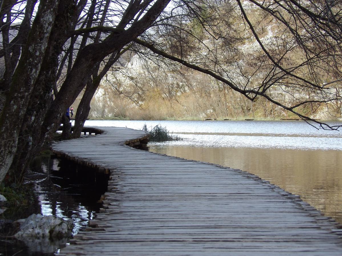 Promenade autour des lacs du parc national de Plitvice