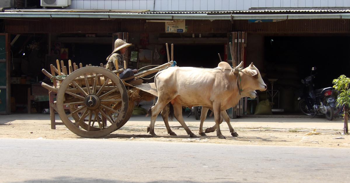 visite de Naypyidaw en Birmanie