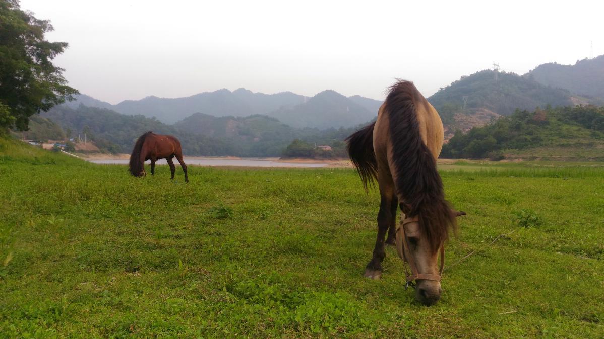tourisme dans le guangxi en chine