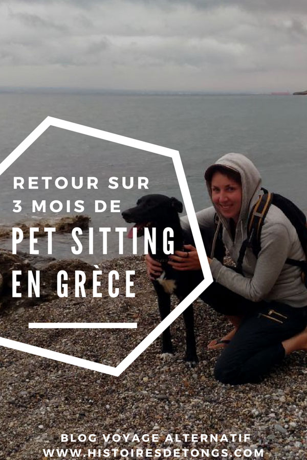 faire du pet sitting