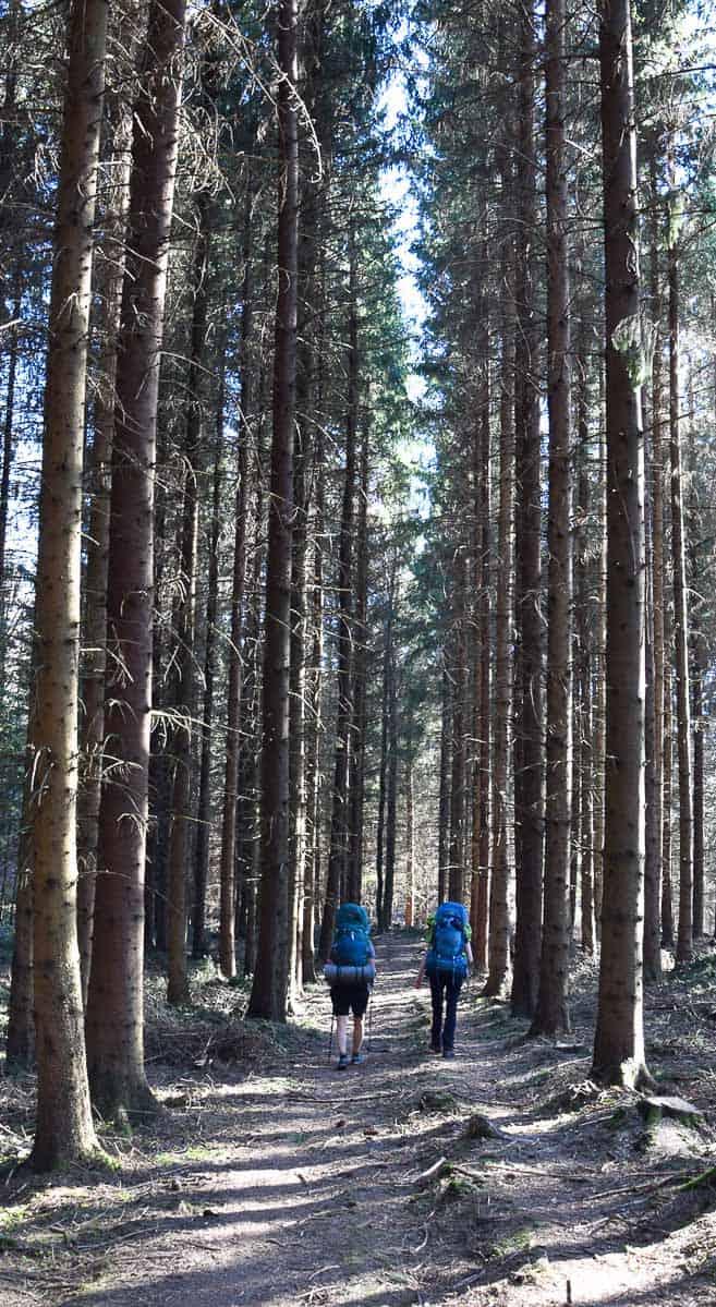 bienfaits randonnée trekking