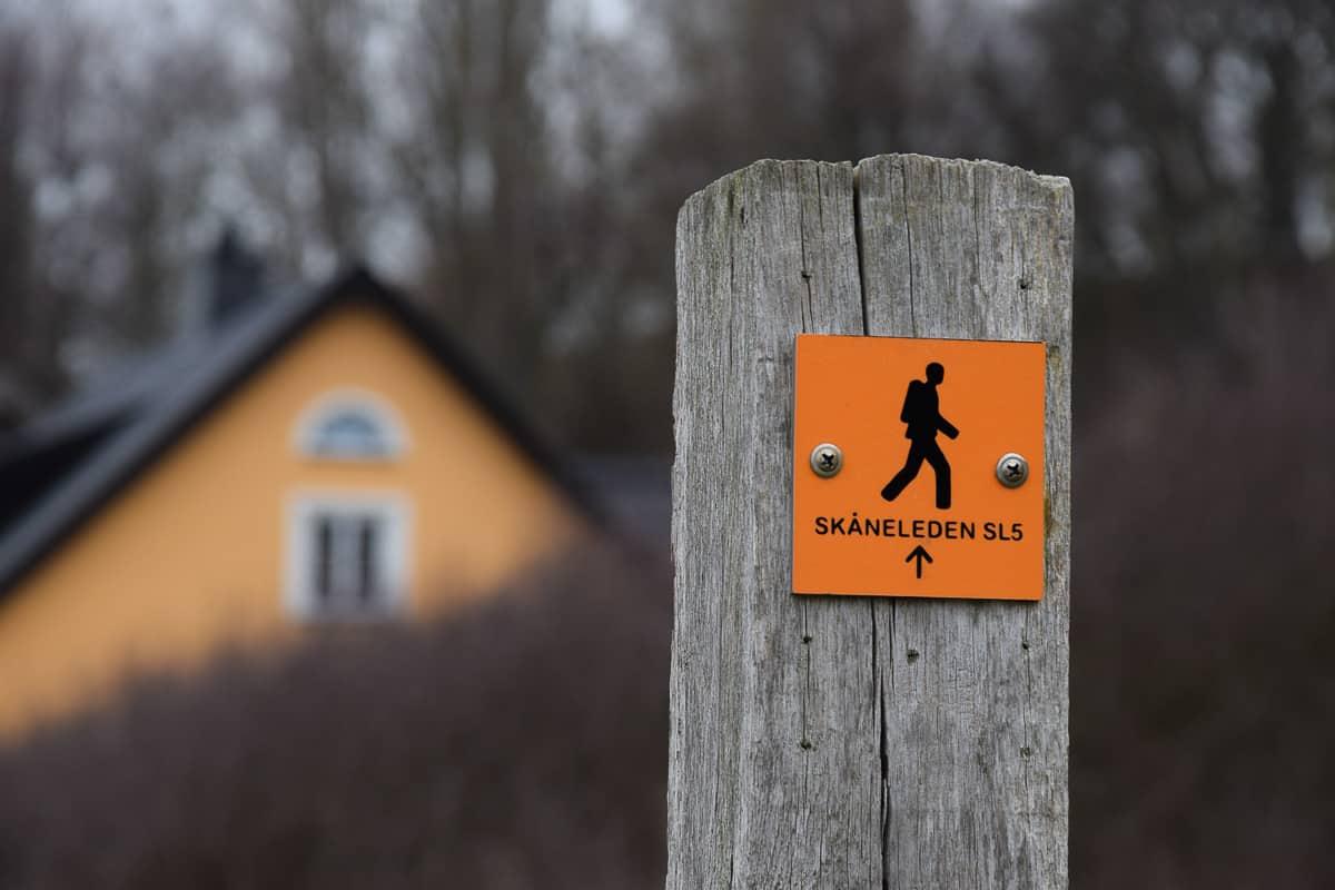 randonnée sud suède Skåneleden