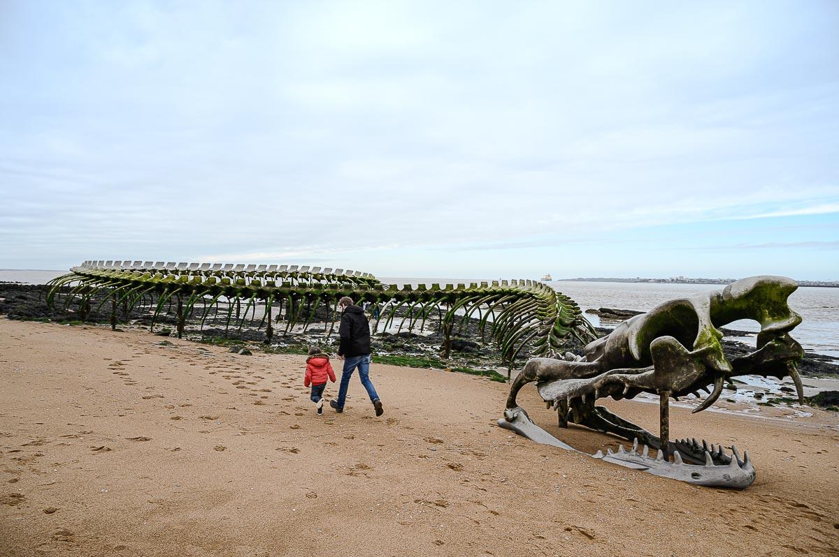 découvrir la Loire et son estuaire