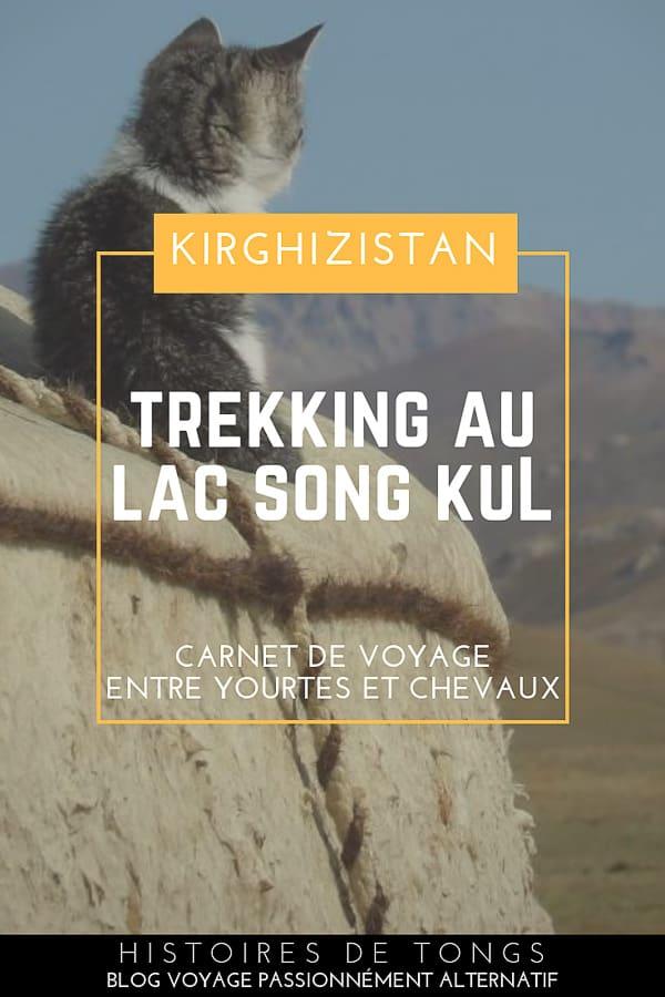 Trek autour du lac Song Kul, une aventure entre yourtes et chevaux sur les hauteurs du Kirghizistan | Histoires de tongs, le blog voyage passionnément alternatif