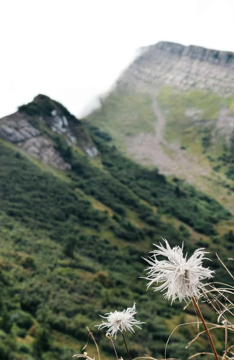 Voyager pour arrêter de fumer : une solution qui fonctionne ! Retrouvez dans cet article mon retour d'expérience ainsi que des conseils pratiques... | Histoires de tongs, le blog voyage passionnément alternatif