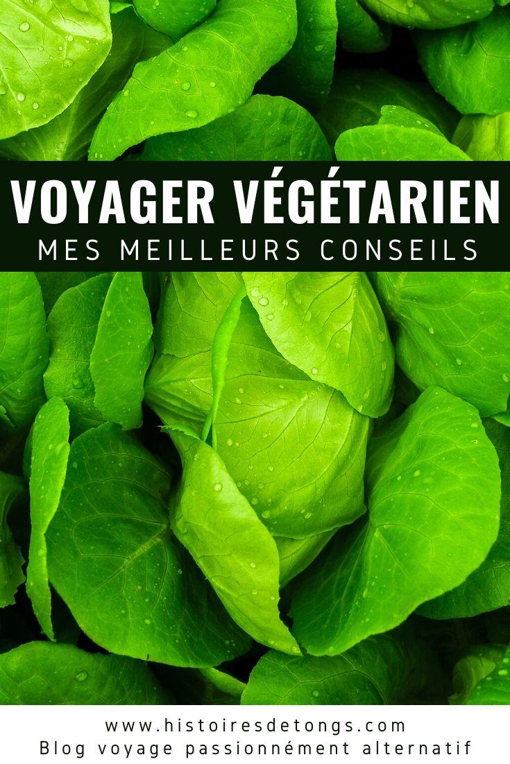 Comment être végétarien ou vegan (végétalien) en voyage ? Ce n'est pas si compliqué ! Voici de nombreux conseils pratiques, issus de mon expérience autour du monde... | Histoires de tongs, le blog voyage passionnément alternatif
